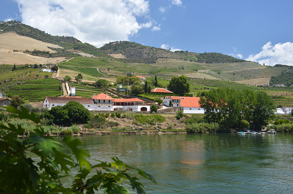 Quinta do Bomfim alongside the Douro River